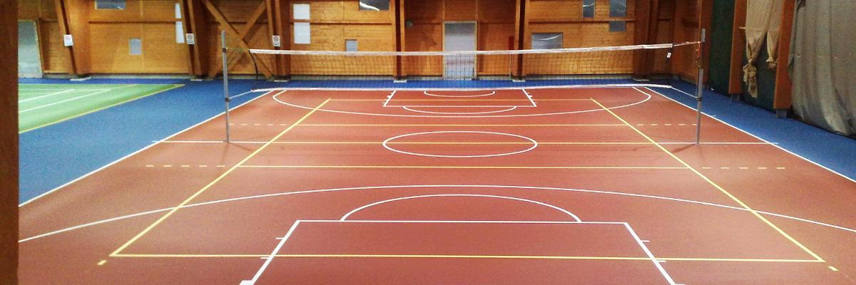 Cocconi claudio pavimentazioni sportive e risanamento - Campi da pallavolo gratis stampabili ...